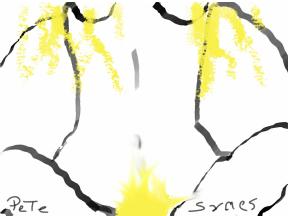 sketch-1544720978086